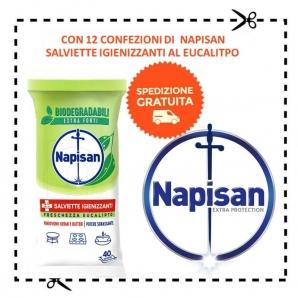 NAPISAN : SPEDIZIONE GRATUITA CON 12 CONFEZIONI DI SALVIETTE IGIENNIZANTI AL EUCALIPTO 0,00€