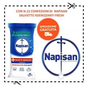 NAPISAN : SPEDIZIONE GRATUITA CON 12 CONFEZIONI DI SALVIETTE IGIENNIZANTI FRSH 0,00€