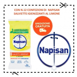 NAPISAN : SPEDIZIONE GRATUITA CON 12 CONFEZIONI DI SALVIETTE IGIENNIZANTI AL LIMONE 0,00€