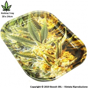 VASSOIO PER ROLLARE WEED - PROFESSIONAL SMALL ROLLING TRAY 5,39 €