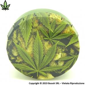 BUDS & WEED SCATOLA CLICK-CLACK (Ø 5,5 CM) - 1 BARATTOLO PORTA INFIORESCENZE DI CANAPA O TABACCO 3,29€