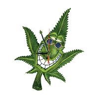 Accessori per Fumatori e Consumatori di Canapa | Sconti su Boooh.it